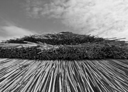 Thatched Roof in Black and White, Gloucester, Gloucstershire