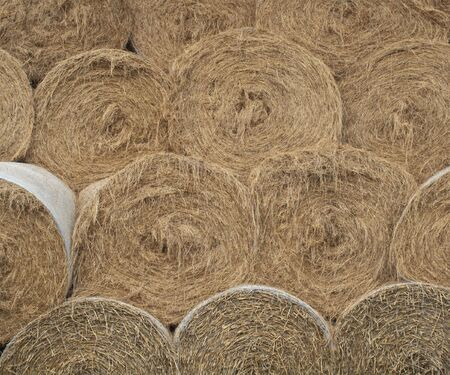 some round hay bales stacked one on another Stock Photo