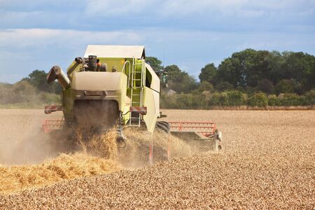 a combine harvestor collecting wheat from a field Stock Photo