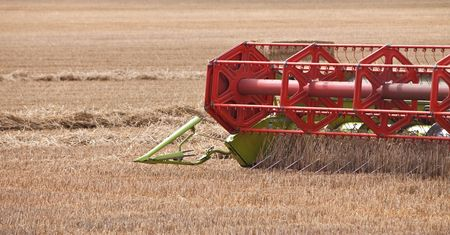 close up of the harvester blades splitting the wheat Stock Photo