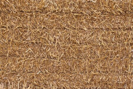 a closeup image of a square hay bale