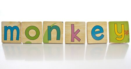 wooden tiles with the letters MONKEY photo
