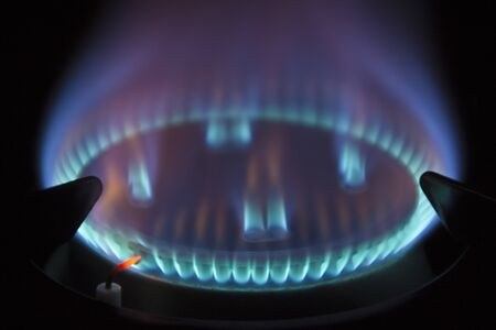 gas hob with blue coloured flame photo