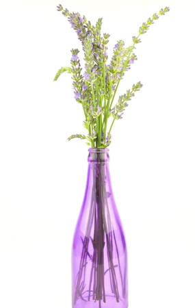 purple bottle containing lavender stems Stock Photo - 15011746