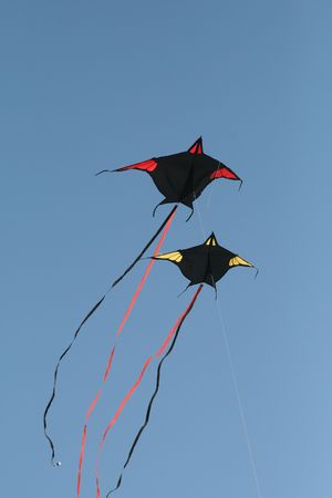 Batman Kites