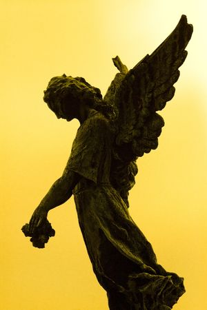 angel cemetery: Angel silhouette, black and yellow tonality