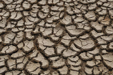 Cracked soil in rural Thailand during the winter. Stock Photo