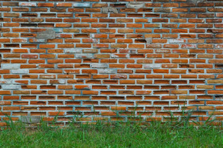 old brick wall and grass