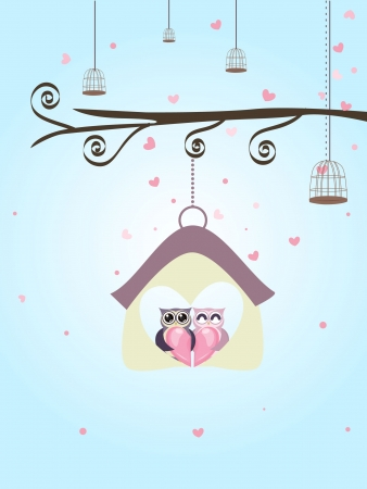owl bird love couple Vector