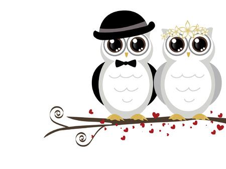 婚禮: 可愛夫婦的婚禮可愛貓頭鷹矢量