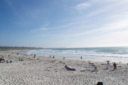 california beach: A sunny California beach scene