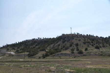 shrubbery: shrubbery on hillside