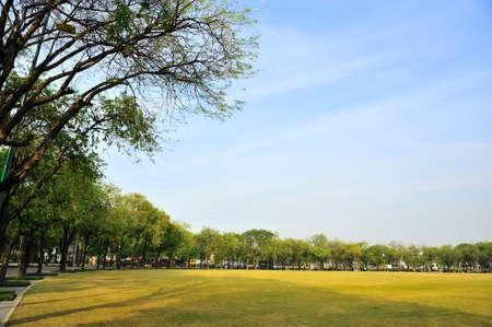grand pa: Parks in Bangkok Stock Photo