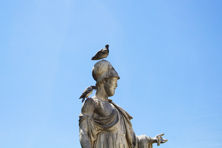 Pigeons on top of statue at Jardin des Tuileries in Paris