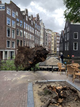 View of a tree fell into canal after a storm in Amsterdam near Armbrug bridge. Historical and traditional buildings are in the background. It is a summer day. 報道画像