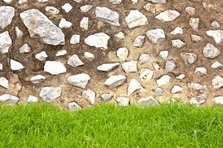 Old brick wall background with green leaf
