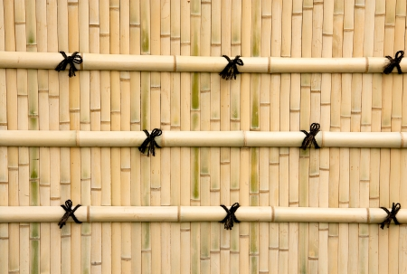 Bamboo walls for background and often seen in Asia