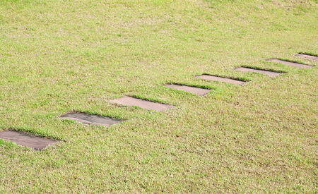Stone block walk path with green grass