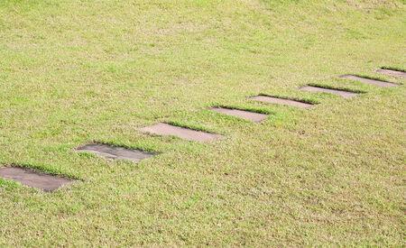 Stone block walk path with green grass