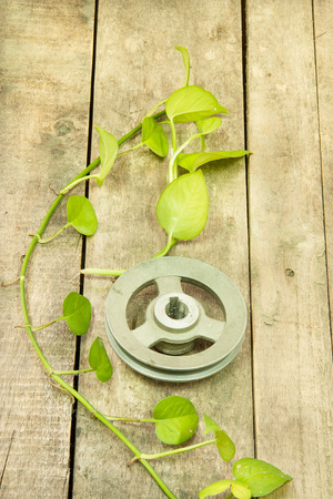 Old metal pulley with green betel leaf  on wooden
