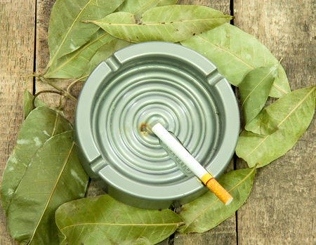 Cigarettes that have not been used  on an ashtray surrounded by leaves photo