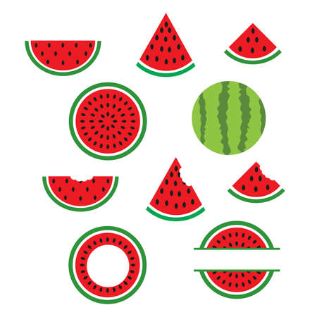 watermelons and slices on white background. summer shirt design. watermelon monogram frame. flat style. Ilustração