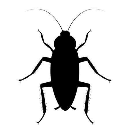 cockroach bug icon on white background. cockroach sign. flat style. bug spray and insecticide symbol.