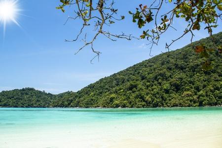 beach and tropical sea  Surin island,Thailand  photo