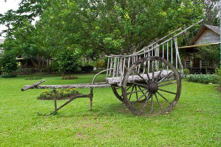 cart in garden
