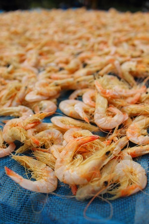 dried salted prawn