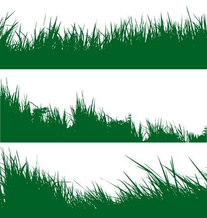 vector illustratie van gras achtergrond