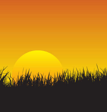 vector illustration of  grass sunset background Illustration