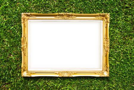 gass: gold frame with gass background