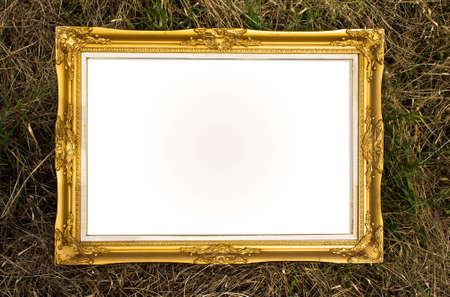 gold frame with gass background