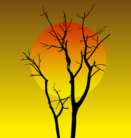 leafless: Vector illustration of   dead tree without Leaves