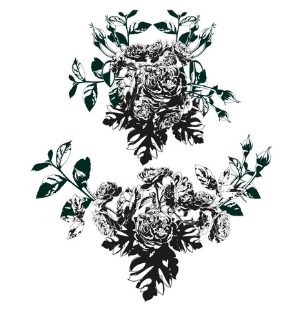 elegantly: Vector illustration of   silhouette rose set