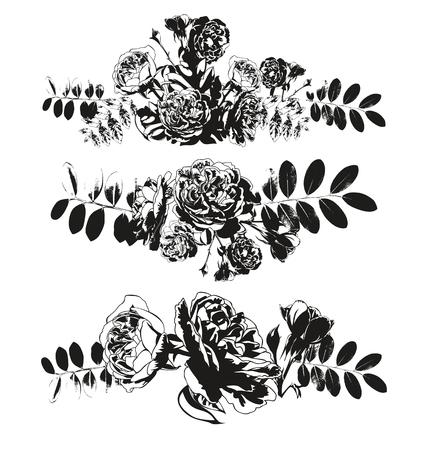 elegantly: Vector illustration of roses element