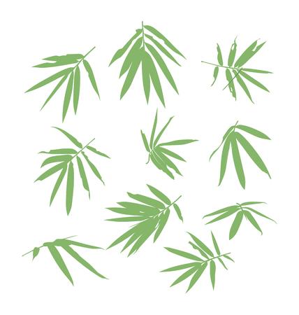 japones bambu: ilustración vectorial de la hoja de bambú