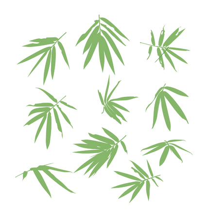 vector illustration of bamboo leaf
