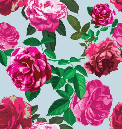 rose pattern: Vector Illustration of  floral seamless pattern