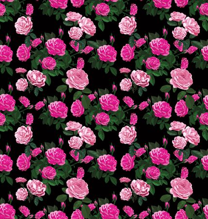 vector illustration of floral seamless pattern Illustration