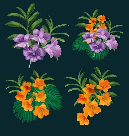 bunch: Illustration of orchid bunch  set Illustration