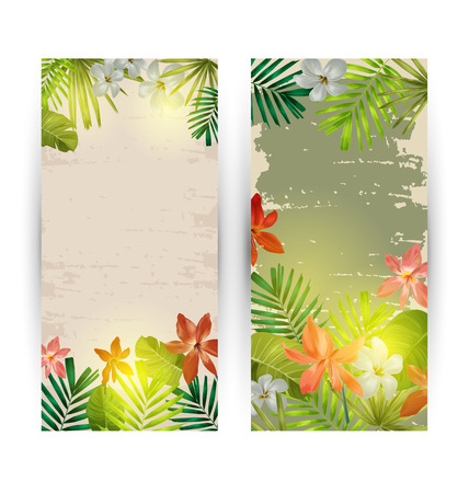vertical garden: Illustration of  tropical plant banner
