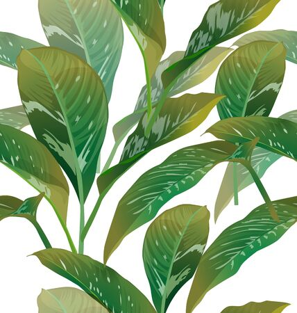 copyspace: tropical leaf background with copyspace