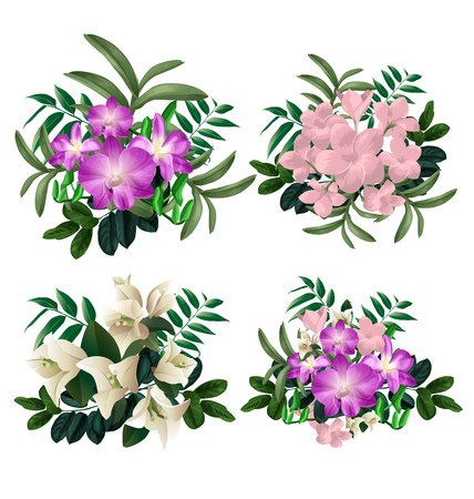 Illustration of  floral bunch set.Plumeria pudica ,Bougainvillea and orchid