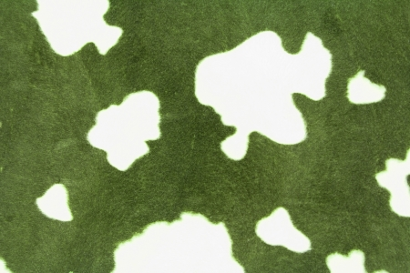 cow pattern texture or background photo