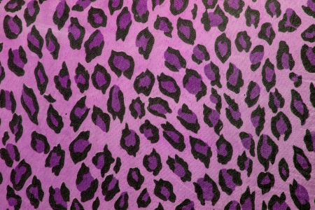 Texture of leopard skin background Stock Photo