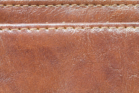 dry skin: Close up Leather Wallet Women background Stock Photo