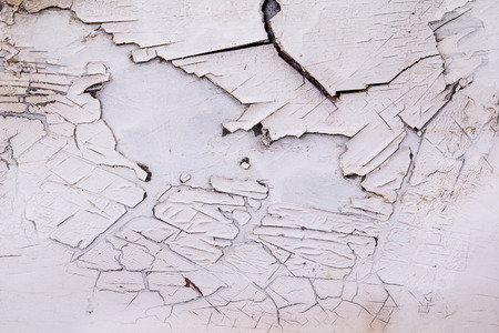 crackles: Structure of the old cracked paint.