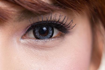 ojos marrones: Close-up shot de ojo de la mujer asi�tica con las lentes de contacto de color gris Foto de archivo